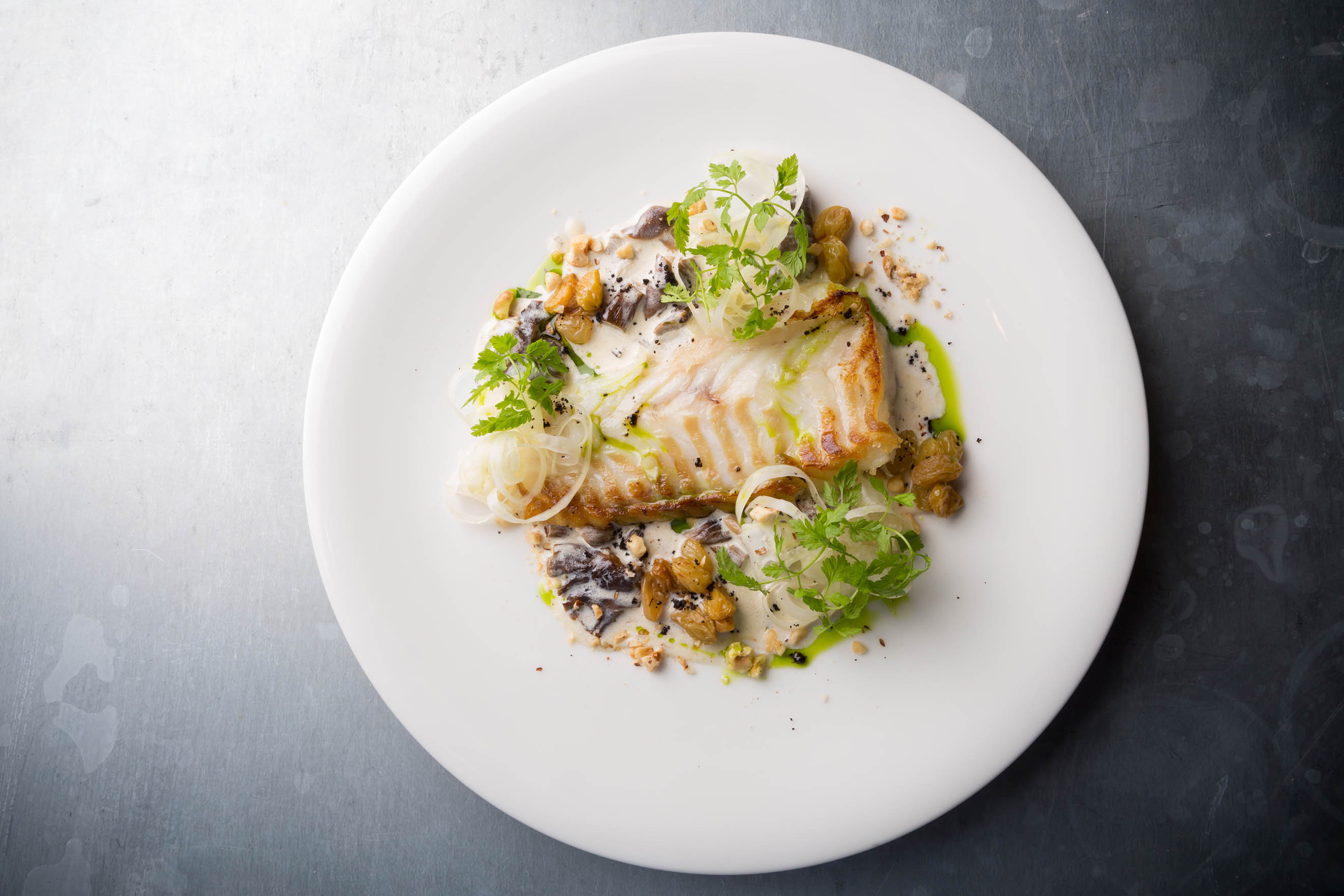 Fish with white sauce
