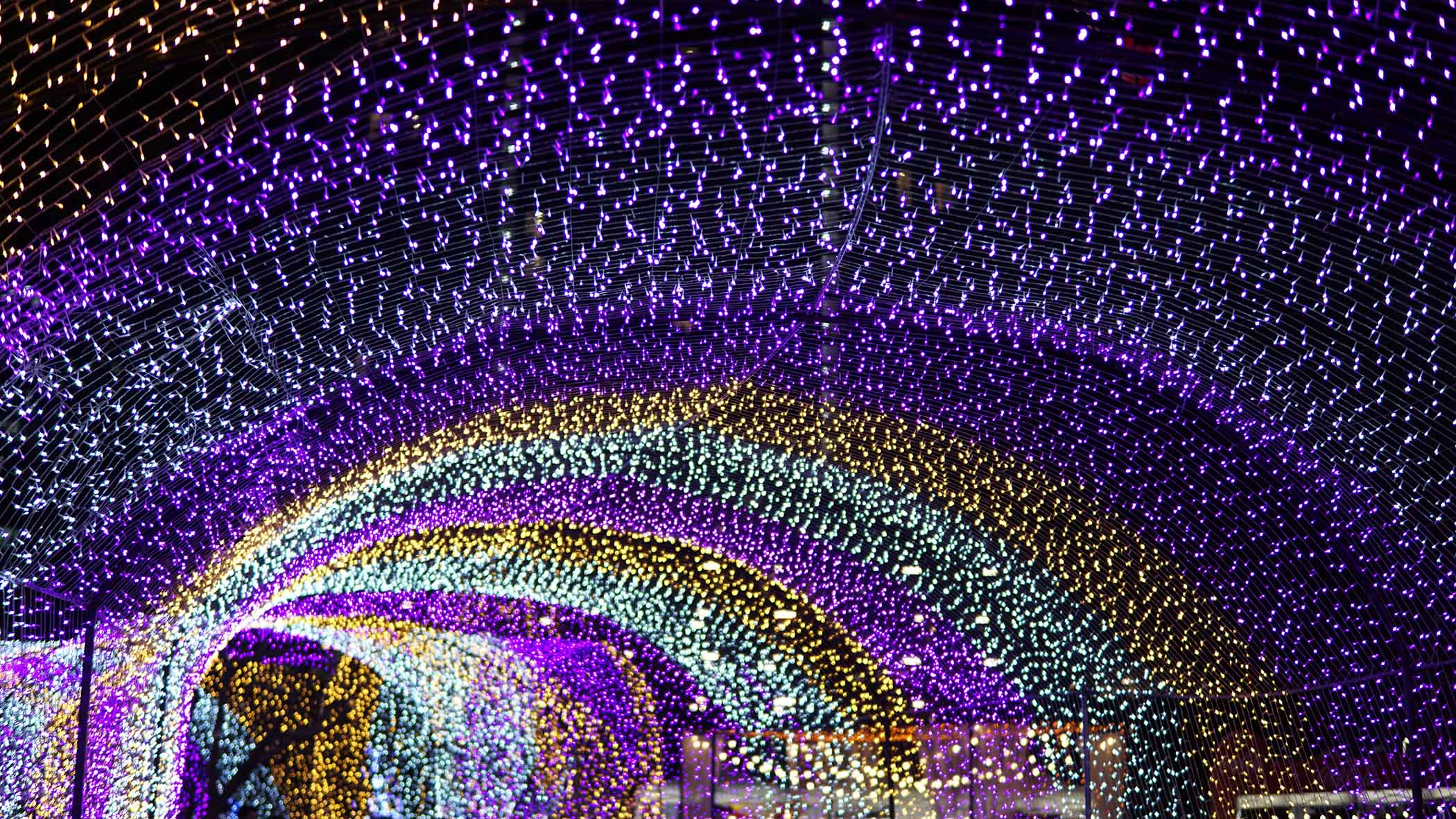 Tunnel of holiday lights